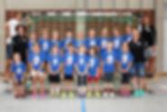MINIS (2011/2012)