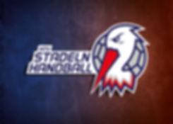 Stadeln_Storks_Handball_LOGO-01.jpg