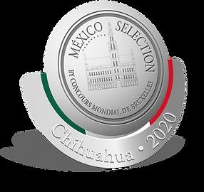 Logo-México-2020-v4.png