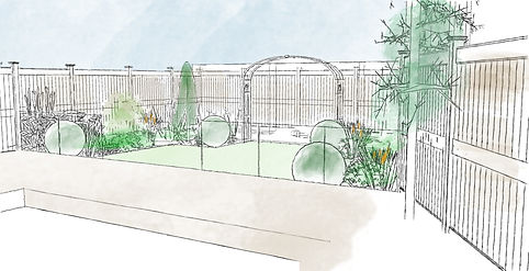 Design for a small contemporary garden