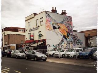 Spreading my wings in Bristol