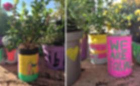 Planters2.jpg