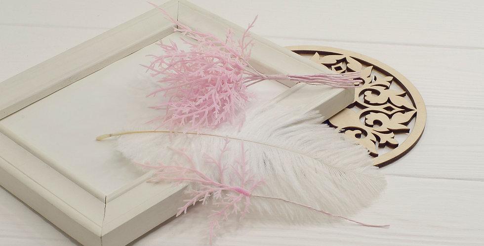Ветка Туи  декоративная, нежно розовая