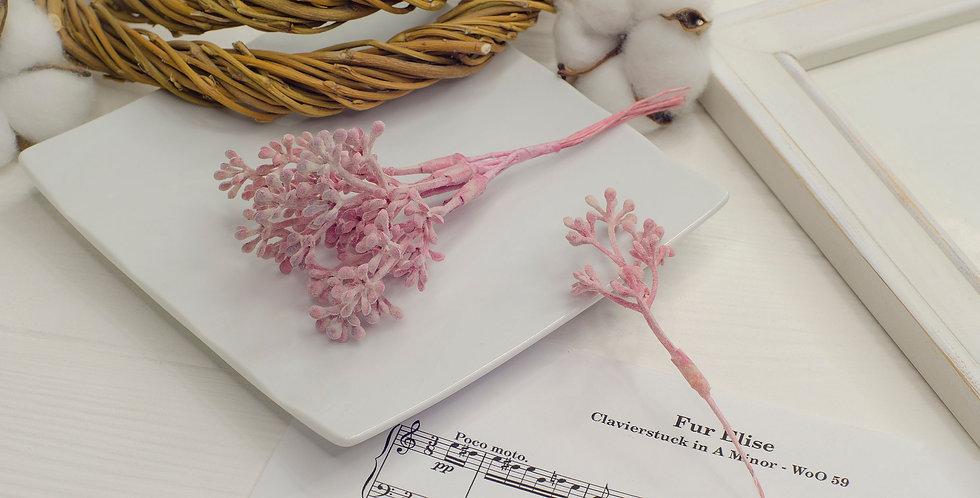 Почки на ветке маленькие пыльные  , розовые