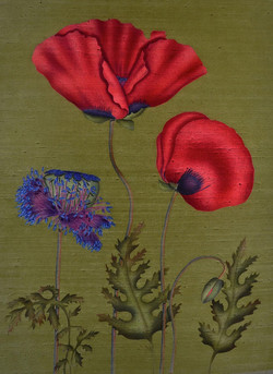 'POPPIES WITH POD' (2016)