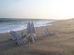 Jennifer McCurdy Beach Shot 6 Photograph