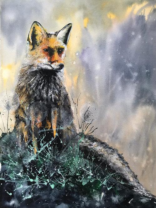 'Fox' Limited Edition A3 Print