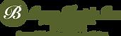 Bryan-Electric-Logo_website.png