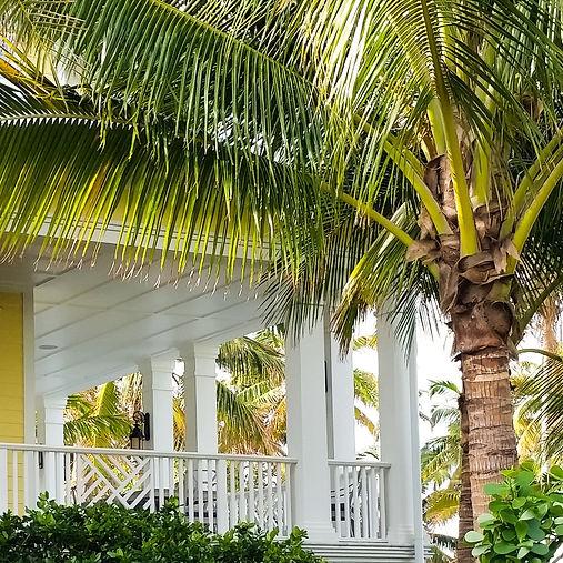 Charming Southern Veranda with Palm Tree