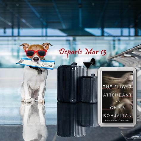 the flight attendant new.jpg