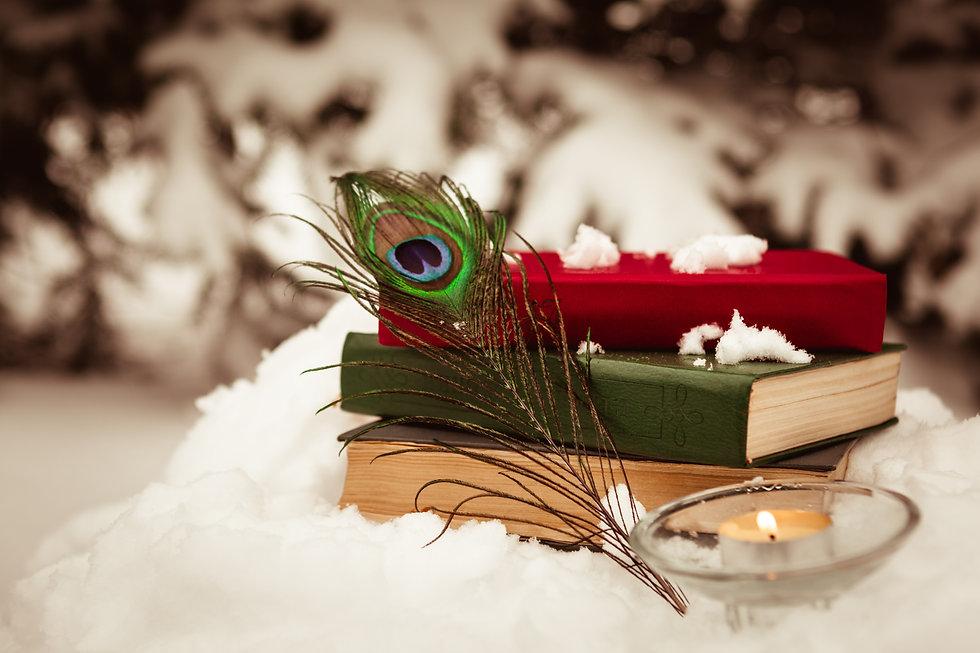 books in the snow.jpg