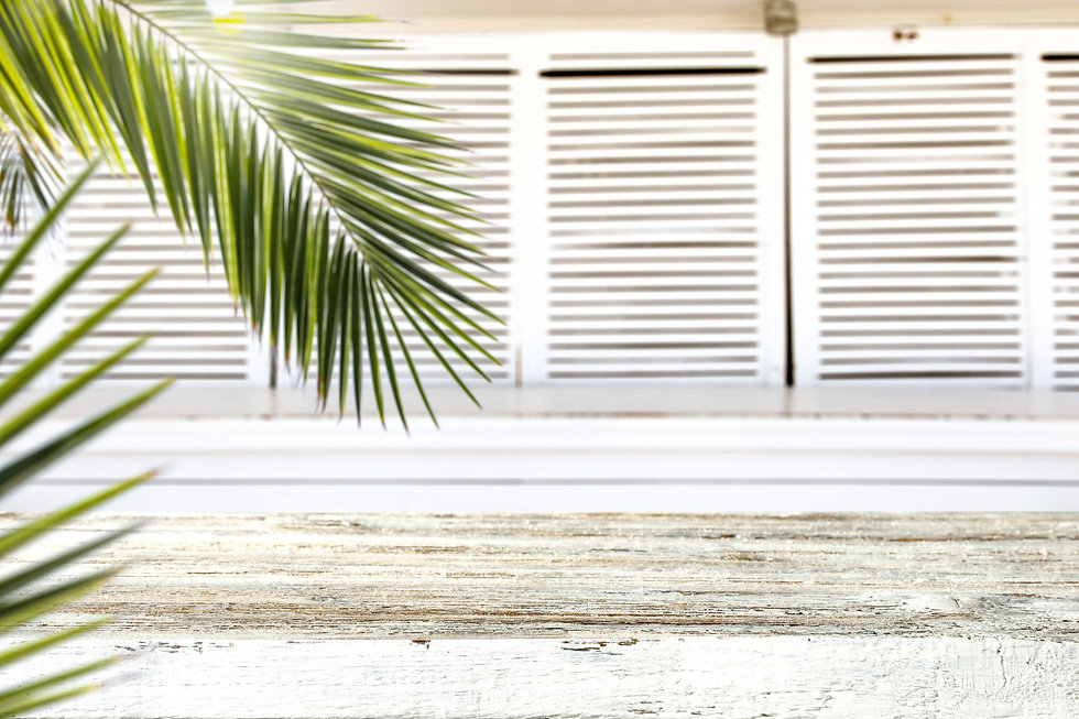 Palm shutters summer white wood  smaller