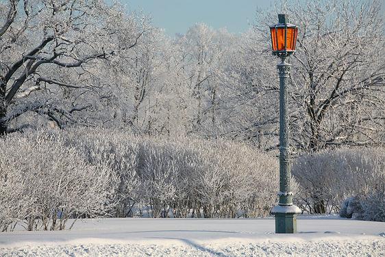 narnia street lamp.jpg