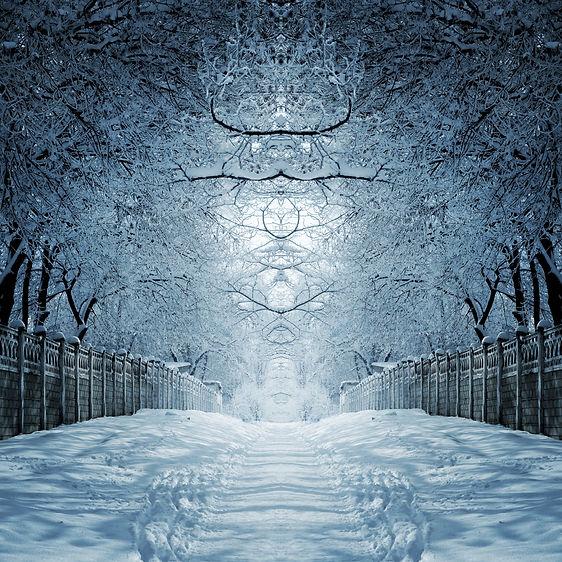snow magical fence .jpg