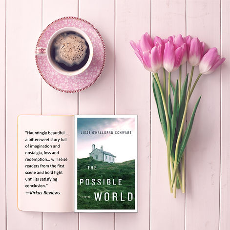 the possible world book promo june 26.jp