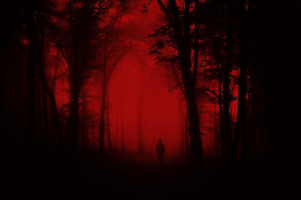 red and black man woods.jpg