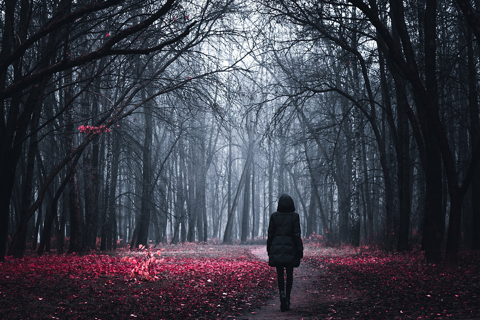 Mystical Strange forest in a fog with re