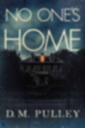 no one's home.jpg