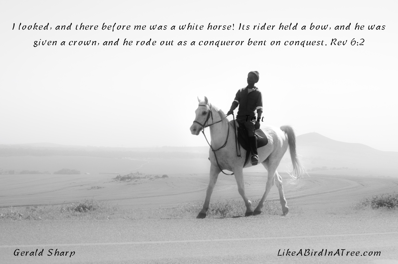 White_Horse_Conqueror_©_G_Sharp
