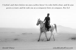 White_Horse_Conqueror_©_G_Sharp