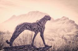 Cheetah Delaire Graff