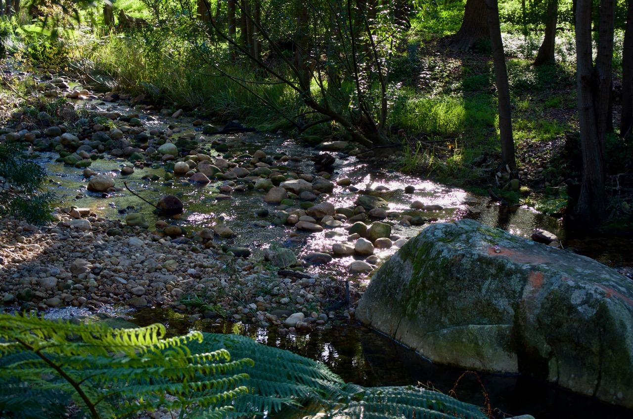 Molenvliet River