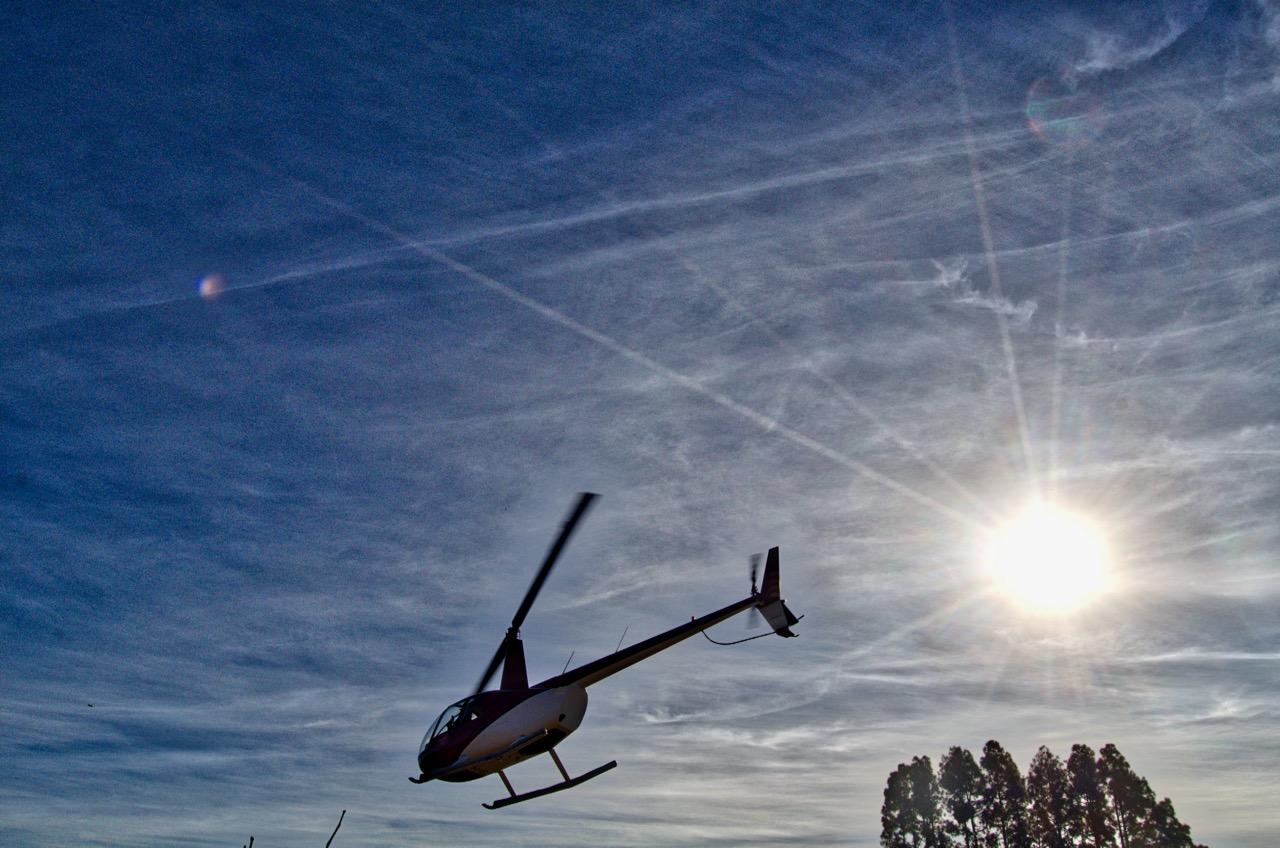 Chopper - Poetic Licence