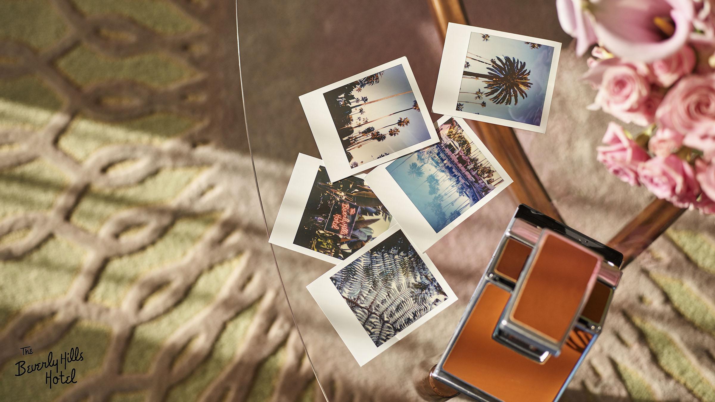 Polaroid camera logo