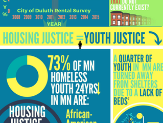 Housing in Duluth Infographic