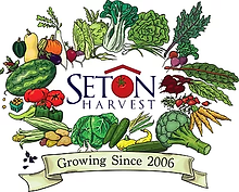 Seaton Harvest.webp