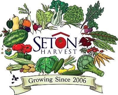 Seaton Harvest.webp