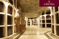 Cricova_cellar_winery__10_.jpg