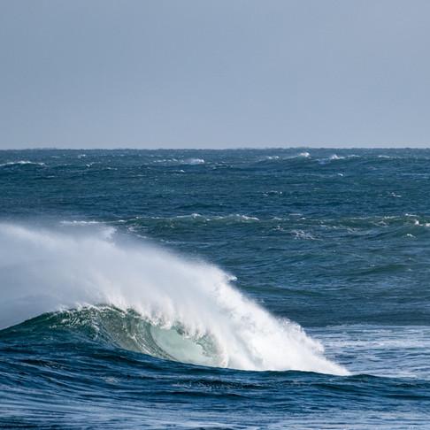 Ocean Optimism!