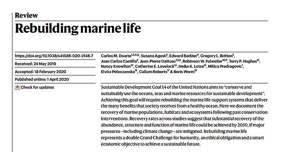 Nature Rebuilding Marine Life.png