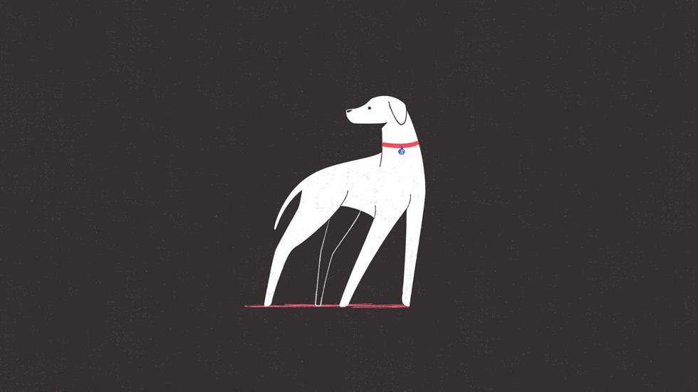 DOG_STYLEFRAME-03.png