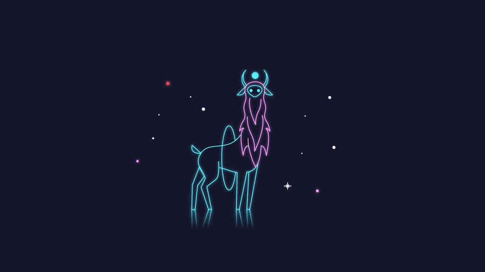 SNFCC Xmas 2018 - Christmas Lights