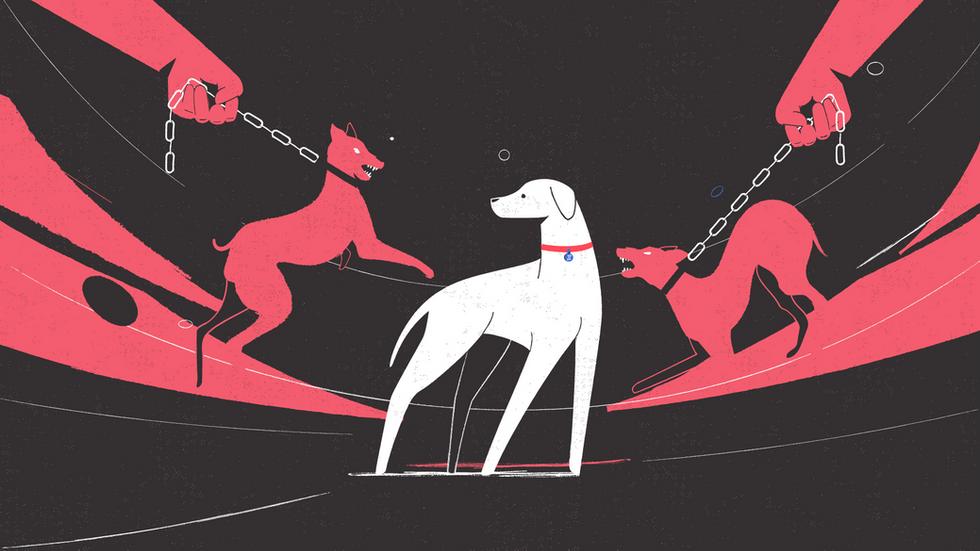 Cruelty toward Animals - SNF Dialogues