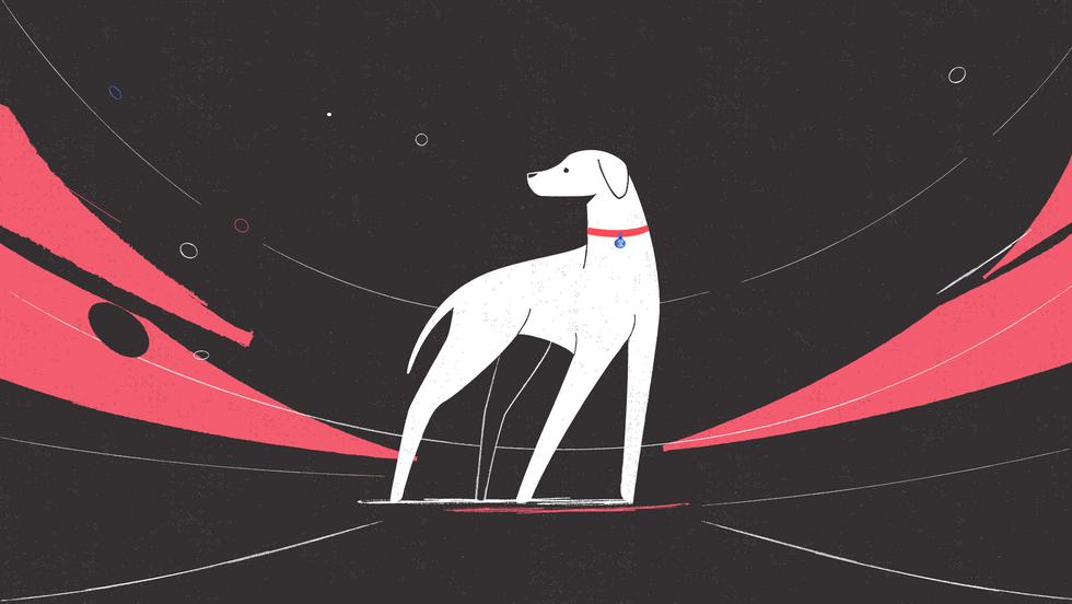 DOG_STYLEFRAME-04.png
