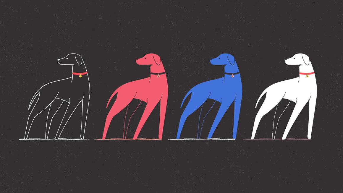 DOG_EVOLUTION-01.png
