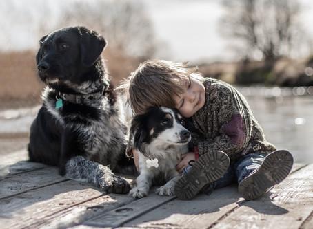 """""""Doktor Hund"""": Heilende Pfoten machen uns gesund."""