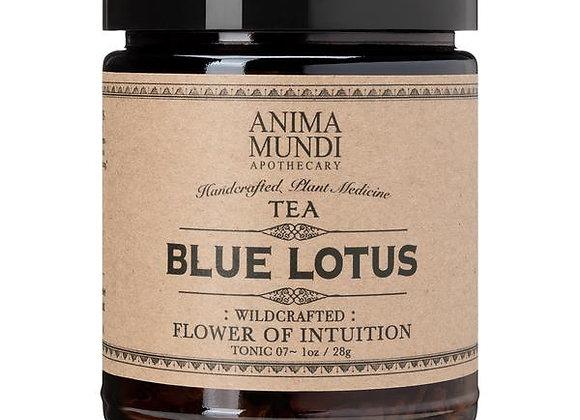 BLUE LOTUS : Flower of Intuition Tea