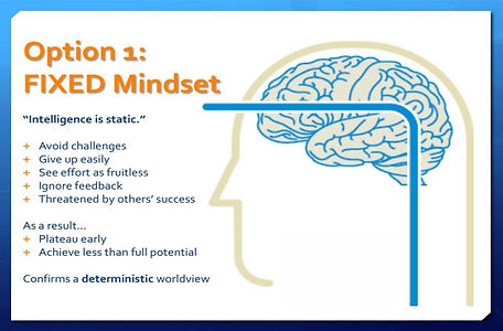picture fixed -growth mindset