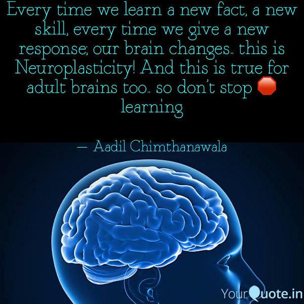 Brain Plasticity quote 2