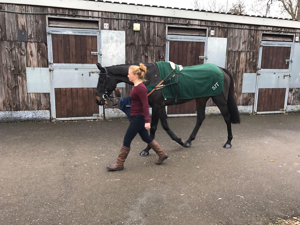 More Than Luck at Southwell