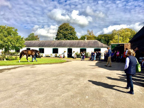 Sunny Saturday for our owners day!