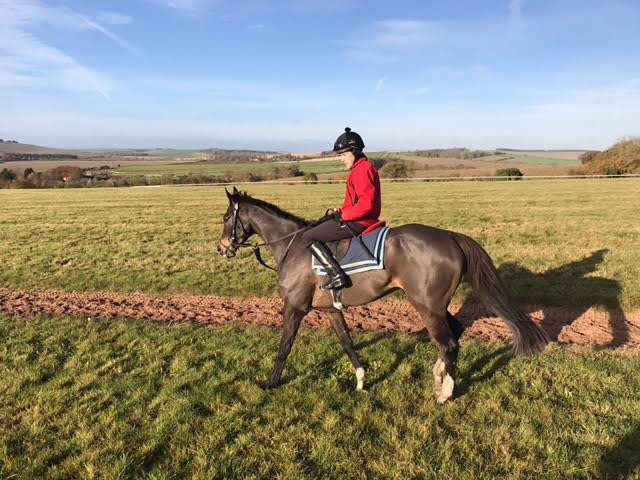 Torhousemuir looking well on his way back from the gallops