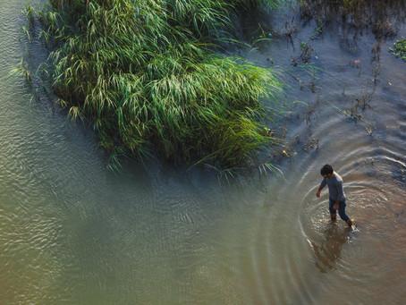 Ympäristökriisi pakottaa meidät muuttumaan