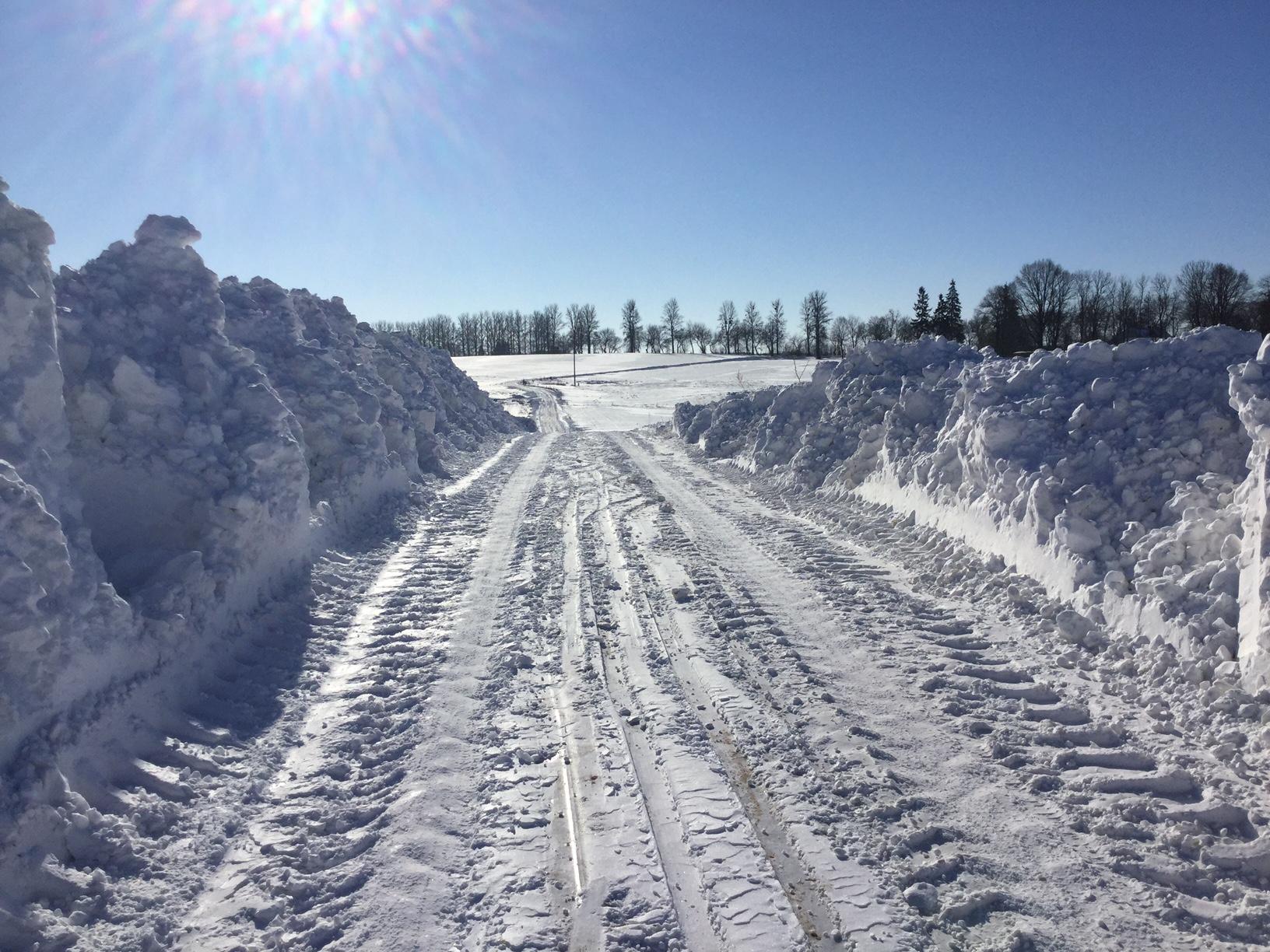Zima w Golubkach 2016/17