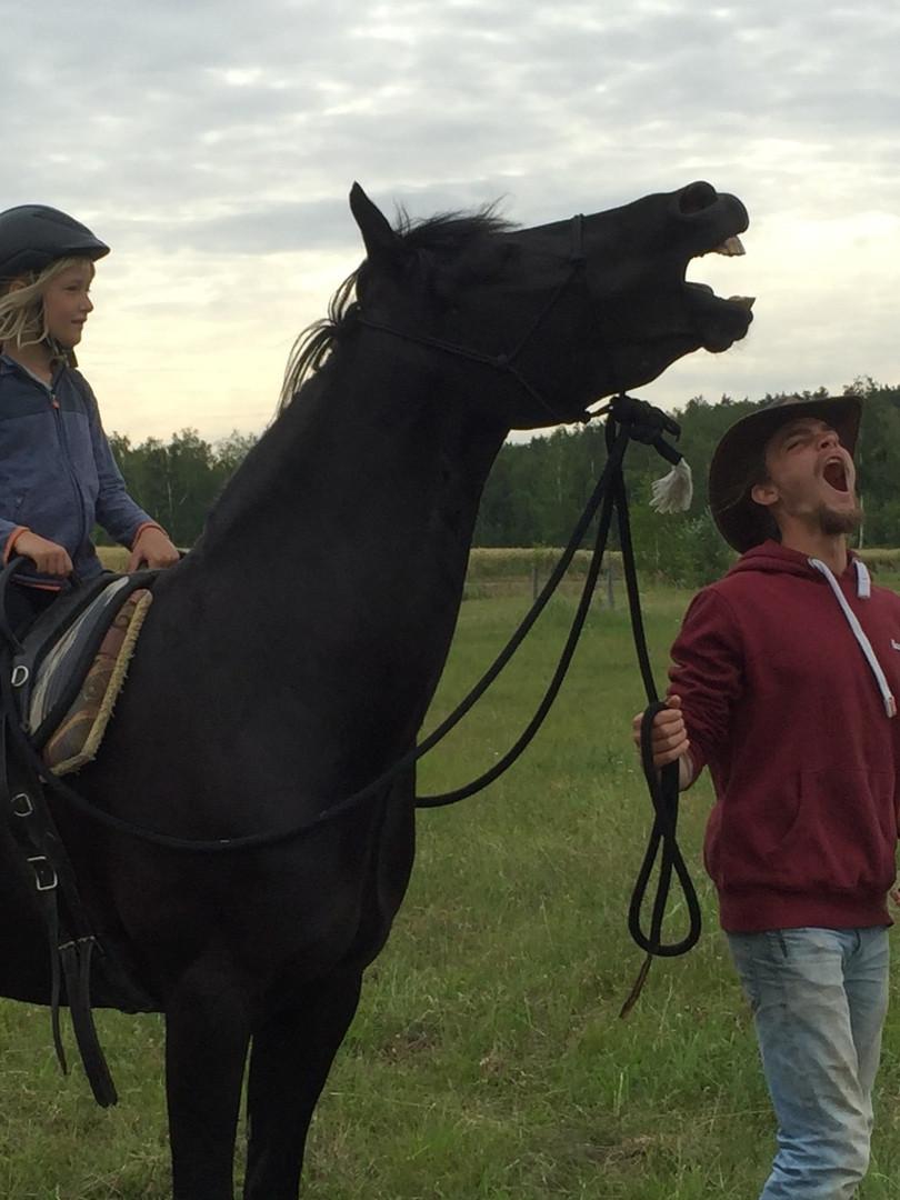 Future Together - Pferde Erlebniscamp