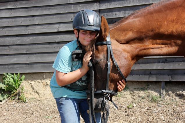 Beziehungsarbeit mit Pferden